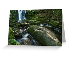 Husky Branch Falls - GSMNP Greeting Card
