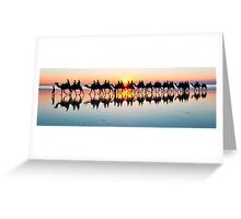 Camels on Cable Beach Broome at Sunset  Greeting Card