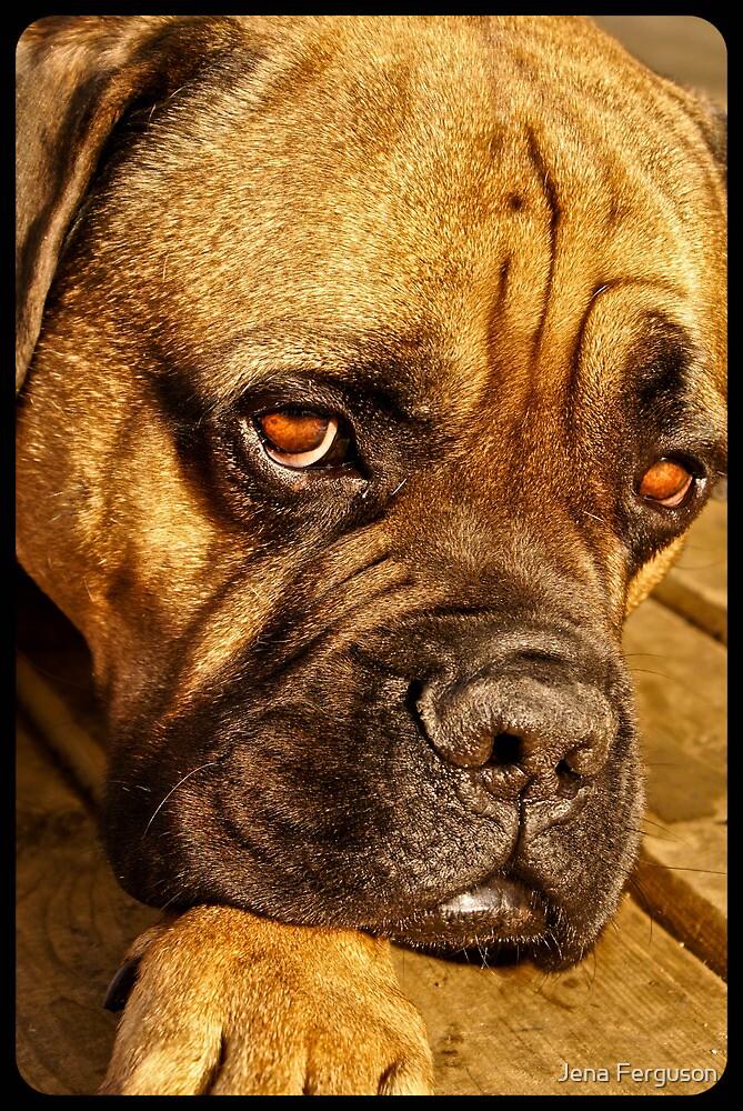 Riddick by Jena Ferguson