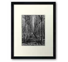 Willow Plantation - Swan Hill Framed Print