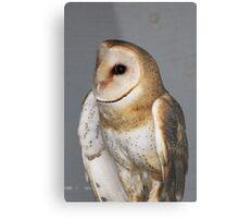 Barn Owl - Casper Metal Print