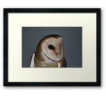 """Barn Owl - """"Casper"""" Framed Print"""
