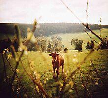 farm girl by Sally McColl