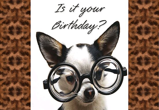 funny birthday meme. funny birthday cards for old