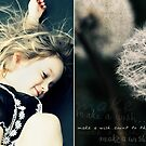 Diptych: Make A Wish ... Count To Three by aglaia b