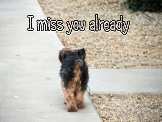 I Miss You Already by down23. Favorite · Report Concern; Share This