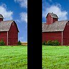 Red Barn Green Grass by John Manning