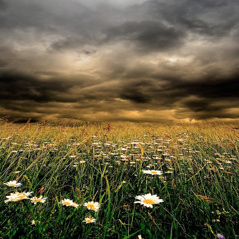 Antes de la tormenta por Philippe Sainte-Laudy