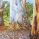 Scribbles Gum Trees by Jack Draper