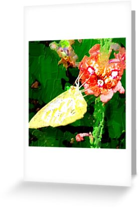 Butterfly Floral Art
