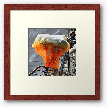 Framed print, off-white matte and cherry box frame