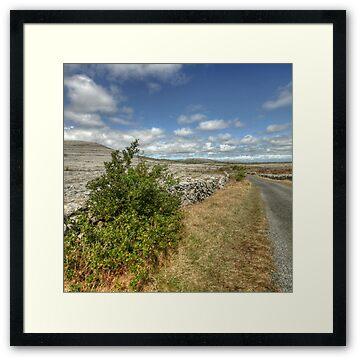 Rural Burren Road, county Clare