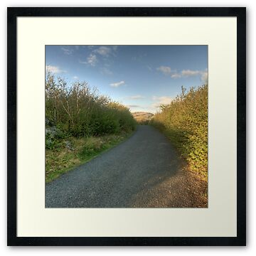 Country road in The Burren in county Clare leading to Mullaghmore mountain
