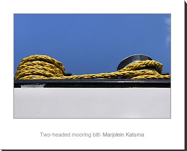 Two-headed mooring bitt