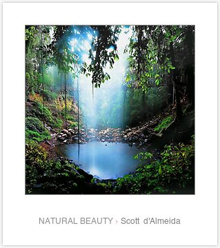 NATURAL BEAUTY by Scott d' Almeida