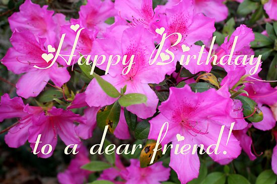 cute happy birthday quotes for best. 2010 happy birthday quotes for