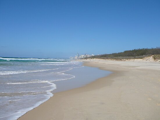 the gold coast beaches. Gold Coast Beach on a Sunny