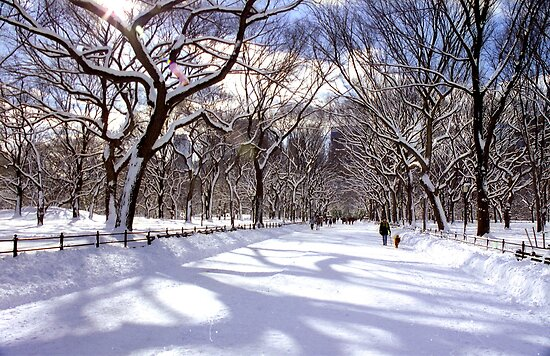 central park new york winter. central park new york winter.