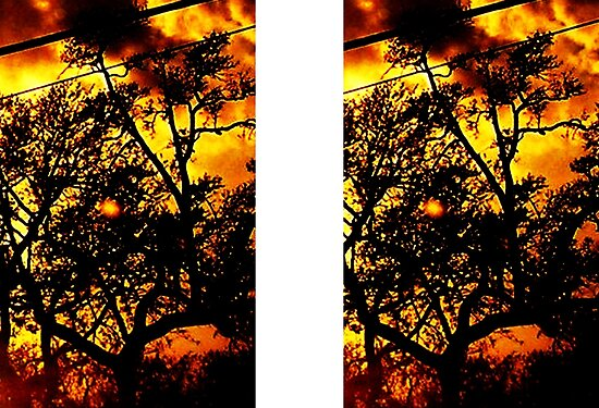 Season's Blaze: 'Abstract' with Creepy Tree III by Kristin Sharpe