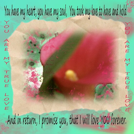 will love you forever quotes. What I gather would really make the iPhone something special: i love you forever pictures. I Will Love You Forever by; I Will Love You Forever by