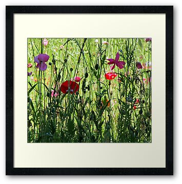 Buy Framed Prints, give to your spouse