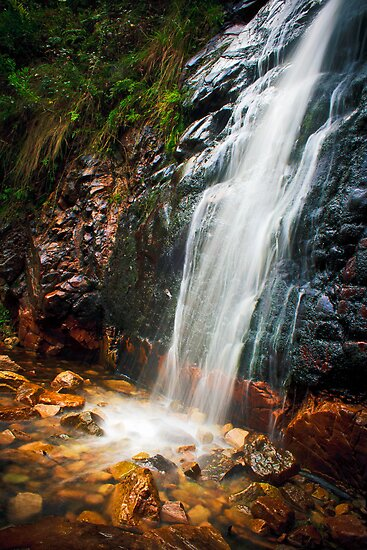 "Waterfall Gully, South Australia"" Fine Art Print by Danielle ..."