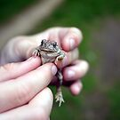 Mr. Toad in Hand  by Edward Fielding