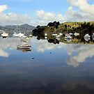 Boats on their moorings: Whangaroa Harbour New Zealand  by tonyfoster
