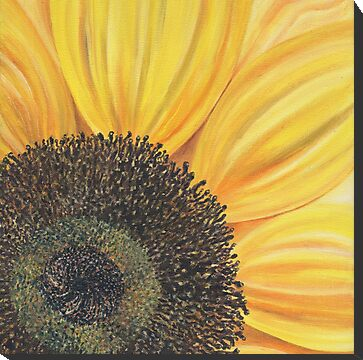 sunflower flower botanical painting for sale