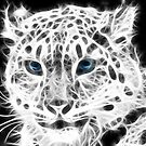 Snow Leopard by Edvar