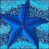 OneStarfish