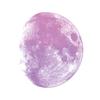 MoonPuree