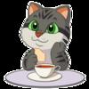 IndigoWildcat