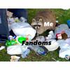 Fandom-Raccoon