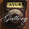 Taylor Gallery USA