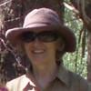 Diane McInerney