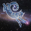 Astro Felis