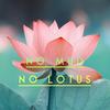 NoMudNoLotus