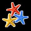 3-Starfish