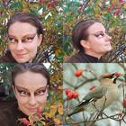 BirdGlamour