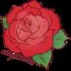 redgothicrose