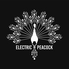 electricpeacock