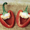 LaughingPeppers