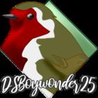 dsboywonder25