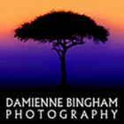 Damienne Bingham