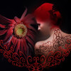 bloomingvine