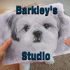 barkleys-studio