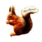 ElviraTSquirrel