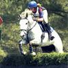 horsemadmoo