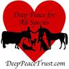 Deep Peace Trust